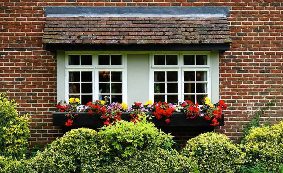 House exterior window with flowers and hedge